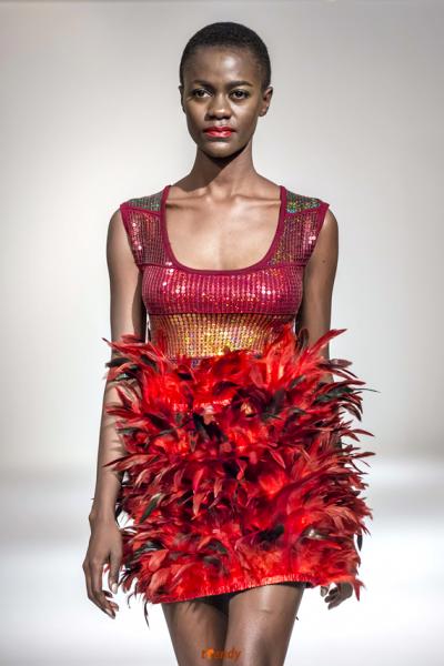 Africa fashion week ny 30