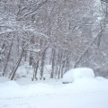 021010-snow-storm-006.jpg