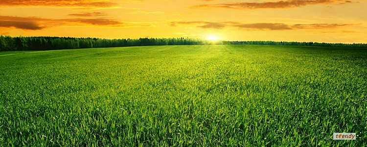 agribusiness_testimonial